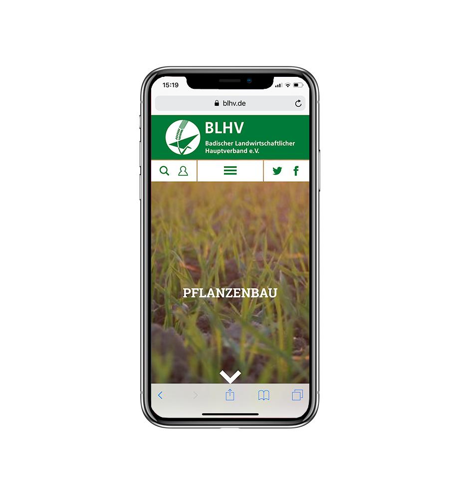 Neue Website für den BLHV, Badischer Landwirtschaftlicher Hauptverband e.V. . Gestaltet von Werbeagentur Schleiner + Partner. Auf dem Bild: Screenshot der Webseite auf einem Smartphone.