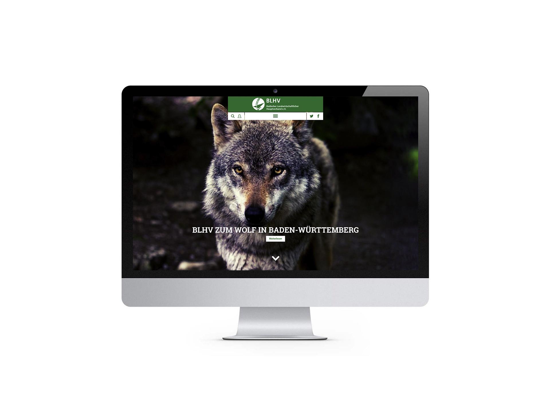 Neue Website für den BLHV, Badischer Landwirtschaftlicher Hauptverband e.V. . Gestaltet von Werbeagentur Schleiner + Partner. Auf dem Bild: Screenshot der Webseite auf einem Monitor.